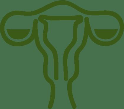Акушерство / гинекология